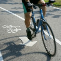 cyclist runs into dog at park